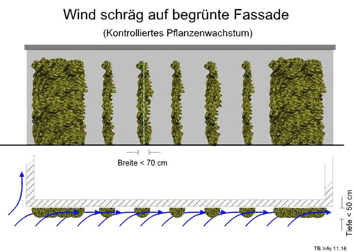 Windlast Anströmung schräg Fassadebegrünung Klettergerüst Rankgerüst