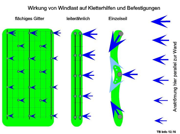 Windlast Fassadenbegünung Umverteilung Fixpunkte Seilspannung