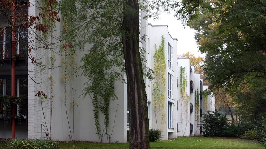 Leitung Fassadenbegrünung