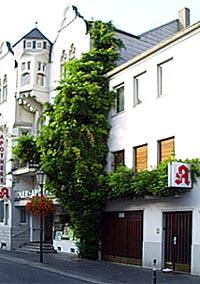 Gesamtansicht der Fassadenbegrünung an der Apotheke mit Blauregen (Wisteria sinensis)