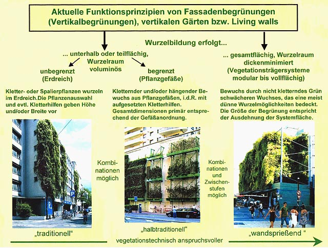 Image 4 - Operating principle of facade greening. The traditional approach which uses climbing plants (grounded in the soil) is complemented by the integration of a comprehensive selection of plants that can be planted directly in the exterior wall construction.
