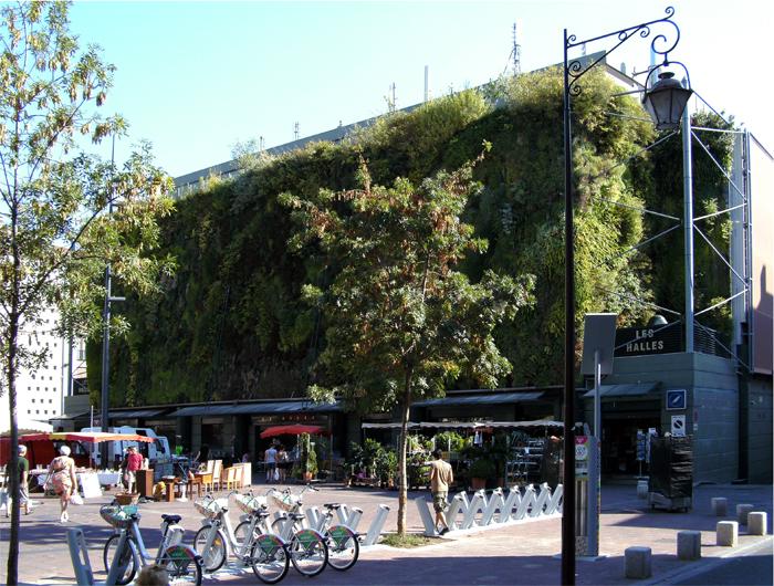 Wandgebundene Fassadenbegrünung, vertikaler Garten, living wall