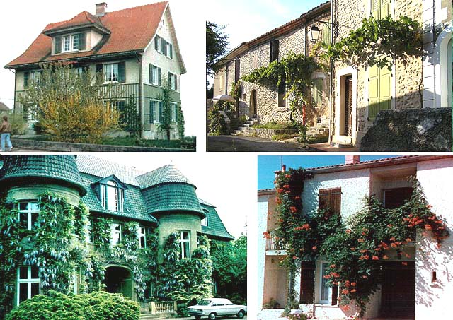 Image 2 - Examples of traditional facade greening