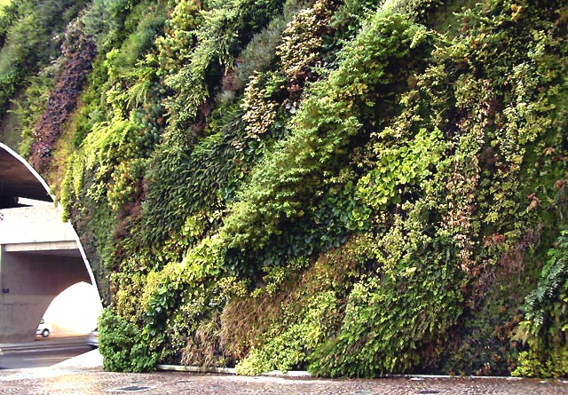 Image 6 - Example of an areal facade greening based on a watered fleece: Detail of a greened bridge in Aix en Provence, vertical garden, Patrick Blanc, 2008. (Photo was taken in August 2009)