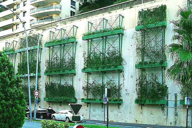 Image 9- Greened retaining wall in Monte Carlo; similar to the system