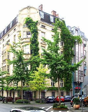Fassadenbegrünung am Stadthaus hinter kleinwüchsigen Bäumen
