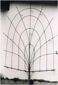 Kletterhilfe aus GFK - Baumform zur Wandbegrünung später Polygrün Sonderform