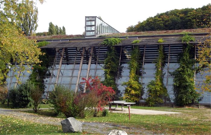 Extensive Dachbegrünung Tonnendach, gewölbtes Hallendach und Fassadenbegrünung vor verglaster Fassade